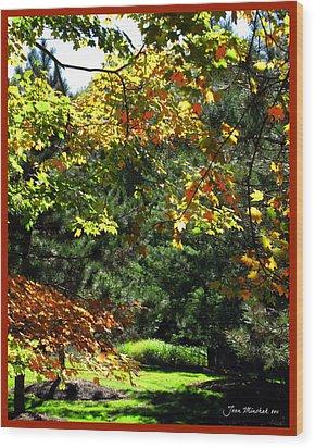 Wood Print featuring the photograph Autumn Backyard by Joan  Minchak