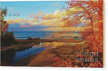 Autumn Beauty Lake Ontario Ny Wood Print