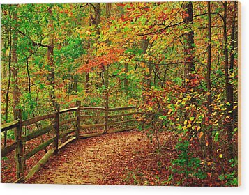 Autumn Bend - Allaire State Park Wood Print