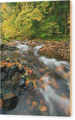 Autumn Beneath Wood Print by Mike  Dawson