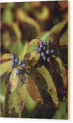 Autumn Berries 6047 Dp_2 Wood Print