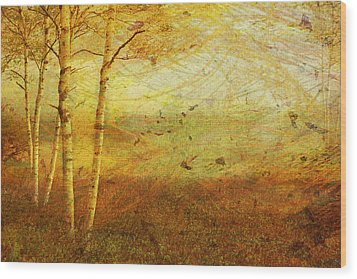 Autumn Breeze Wood Print by Ken Walker