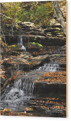Autumn Brook Wood Print by Diane E Berry