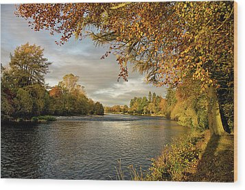 Autumn By The River Ness Wood Print