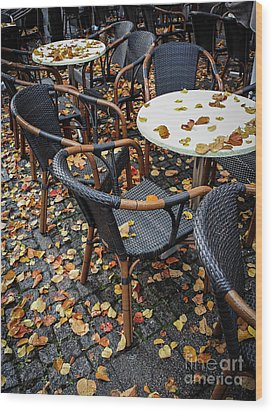 Wood Print featuring the photograph Autumn Cafe by Elena Elisseeva