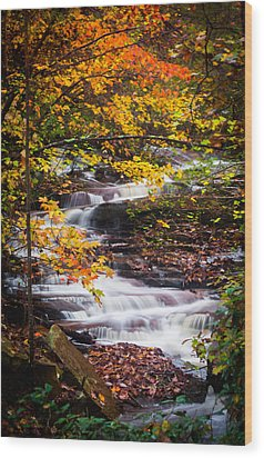 Autumn Cascade  Wood Print