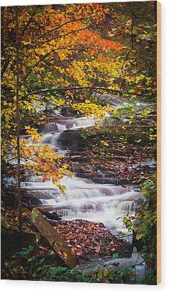Autumn Cascade  Wood Print by Parker Cunningham