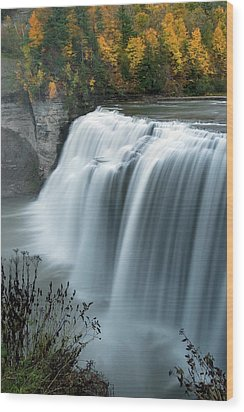 Wood Print featuring the photograph Autumn Cascade by Timothy McIntyre