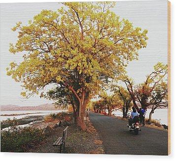 Autumn Causeway Wood Print