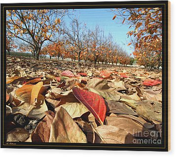 Autumn Colors 04 Wood Print by Arik Baltinester
