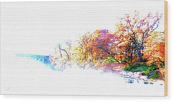 Autumn Colors Wood Print by Hannes Cmarits