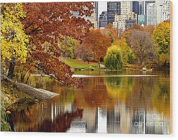 Autumn Colors In Central Park New York City Wood Print