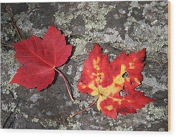 Autumn Colors Wood Print by Kate  Leikin