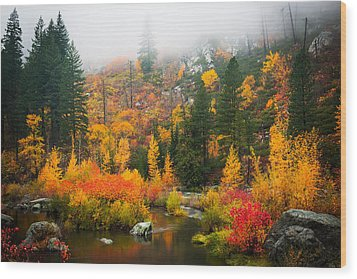 Wood Print featuring the photograph Autumn Colors Symphony by Dan Mihai