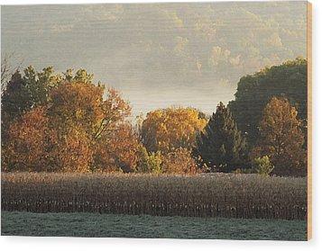 Autumn Cornfield Wood Print