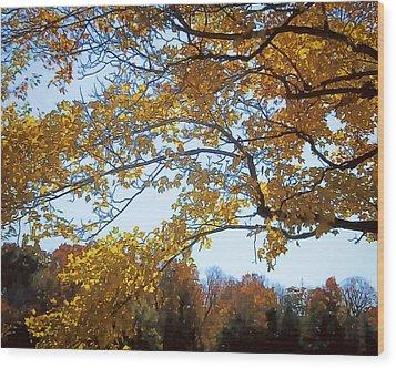 Autumn Cover Wood Print by Jo-Anne Gazo-McKim
