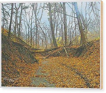Autumn Creekbed Wood Print