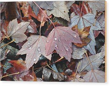 Autumn Cries Wood Print