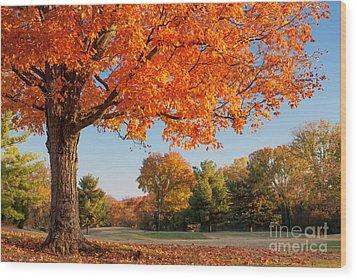 Autumn Dawn Wood Print by Brian Jannsen