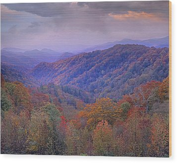 Autumn Deciduous Forest Great Smoky Wood Print by Tim Fitzharris