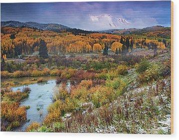 Autumn Dusting Wood Print