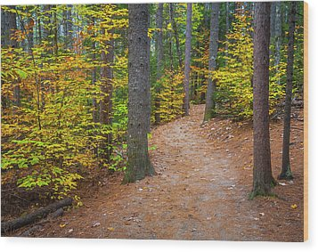 Wood Print featuring the photograph Autumn Fall Foliage In New England by Ranjay Mitra