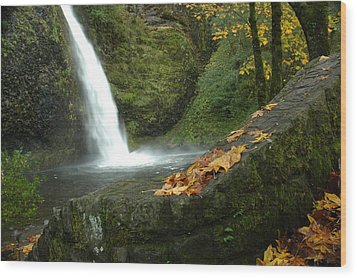 Autumn Falls Wood Print by Lori Mellen-Pagliaro