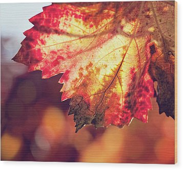 Wood Print featuring the photograph Autumn Fire by Melanie Alexandra Price