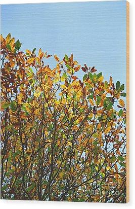 Autumn Flames - Original Wood Print