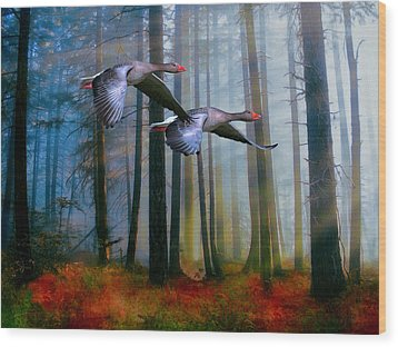 Wood Print featuring the photograph Autumn Flight by Diane Schuster