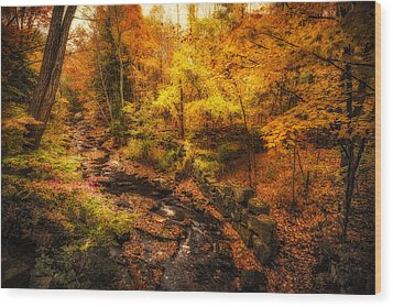 Wood Print featuring the photograph Autumn Flow by Robert Clifford