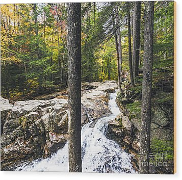 Wood Print featuring the photograph Autumn Flows by Anthony Baatz