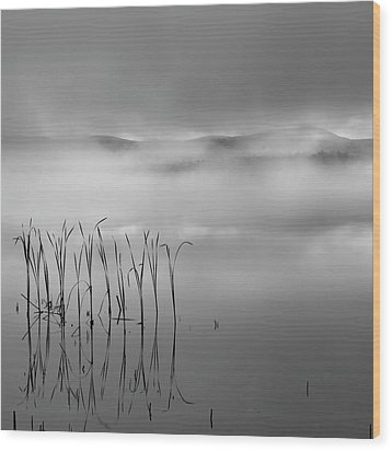 Wood Print featuring the photograph Autumn Fog Black And White Square by Bill Wakeley