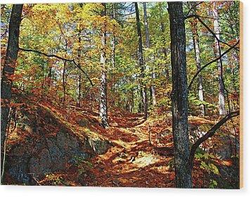 Autumn Forest Killarney Wood Print