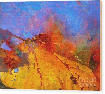 Autumn Fusion 1 Wood Print by Jeff Breiman