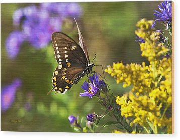 Autumn Garden Butterfly Wood Print by Christina Rollo
