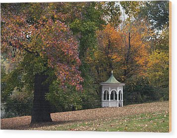 Autumn Gazebo Wood Print by Elsa Marie Santoro