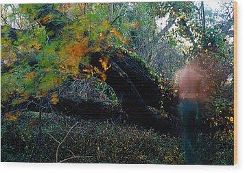 Autumn Ghost Wood Print by Tim Nichols