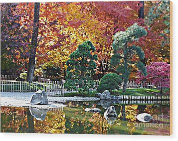 Autumn Glow In Manito Park Wood Print by Carol Groenen