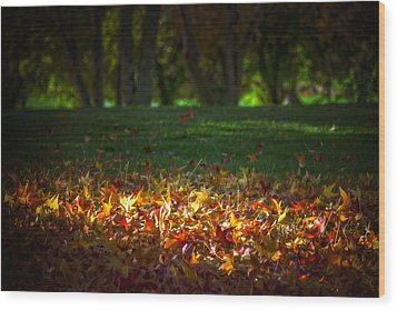 Autumn Glow Wood Print