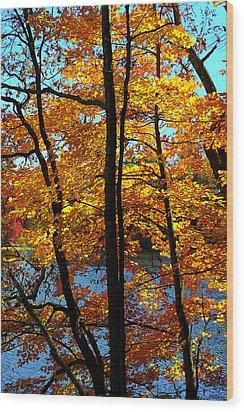 Autumn Gold Wood Print by Alan Lenk