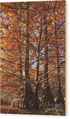 Wood Print featuring the photograph Autumn Grandeur At Lake Murray by Tamyra Ayles
