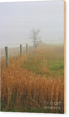 Autumn Grasses Wood Print by Julie Lueders