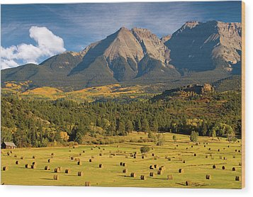 Autumn Hay In The Rockies Wood Print by Steve Stuller