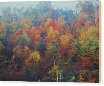 Autumn Hill Aglow Wood Print by Diane Alexander