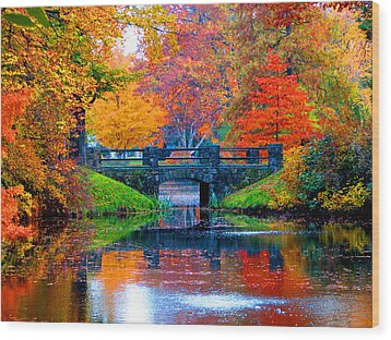 Autumn In Boston Wood Print