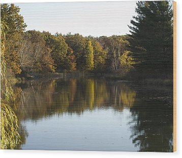 Wood Print featuring the photograph Autumn In Mears Michigan by Tara Lynn
