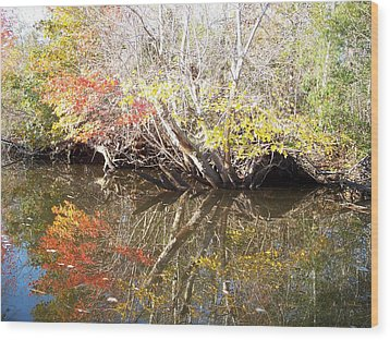 Autumn In Moyock Wood Print