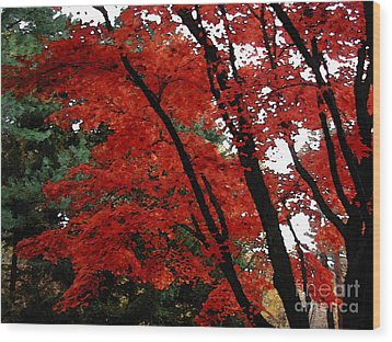 Autumn In New England Wood Print by Melissa A Benson