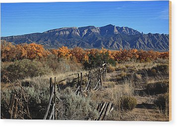 Autumn In New Mexico Wood Print by Anthony Sekellick